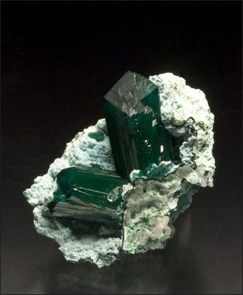 Dioptase Reneville Congo isolated crystals
